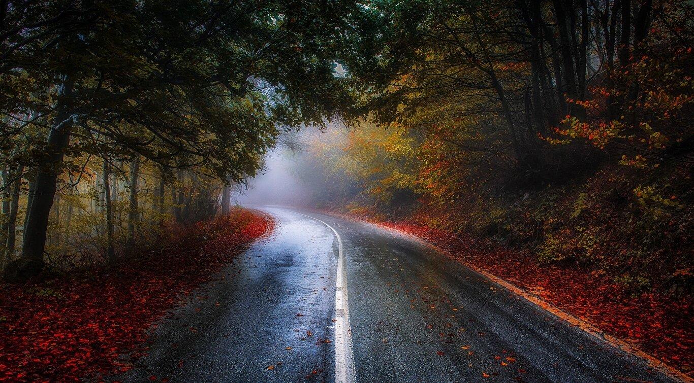 Road: Fall, Road