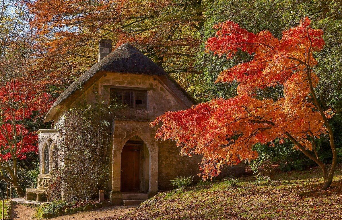 Building: Fall, Tree, Building, England, Foliage, Stone