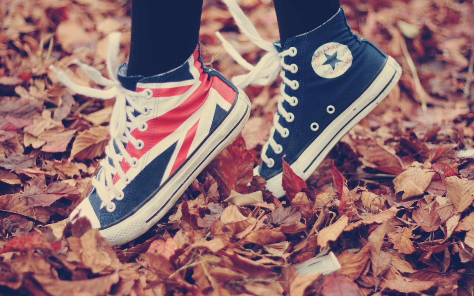 Converse: Shoe, Sneakers