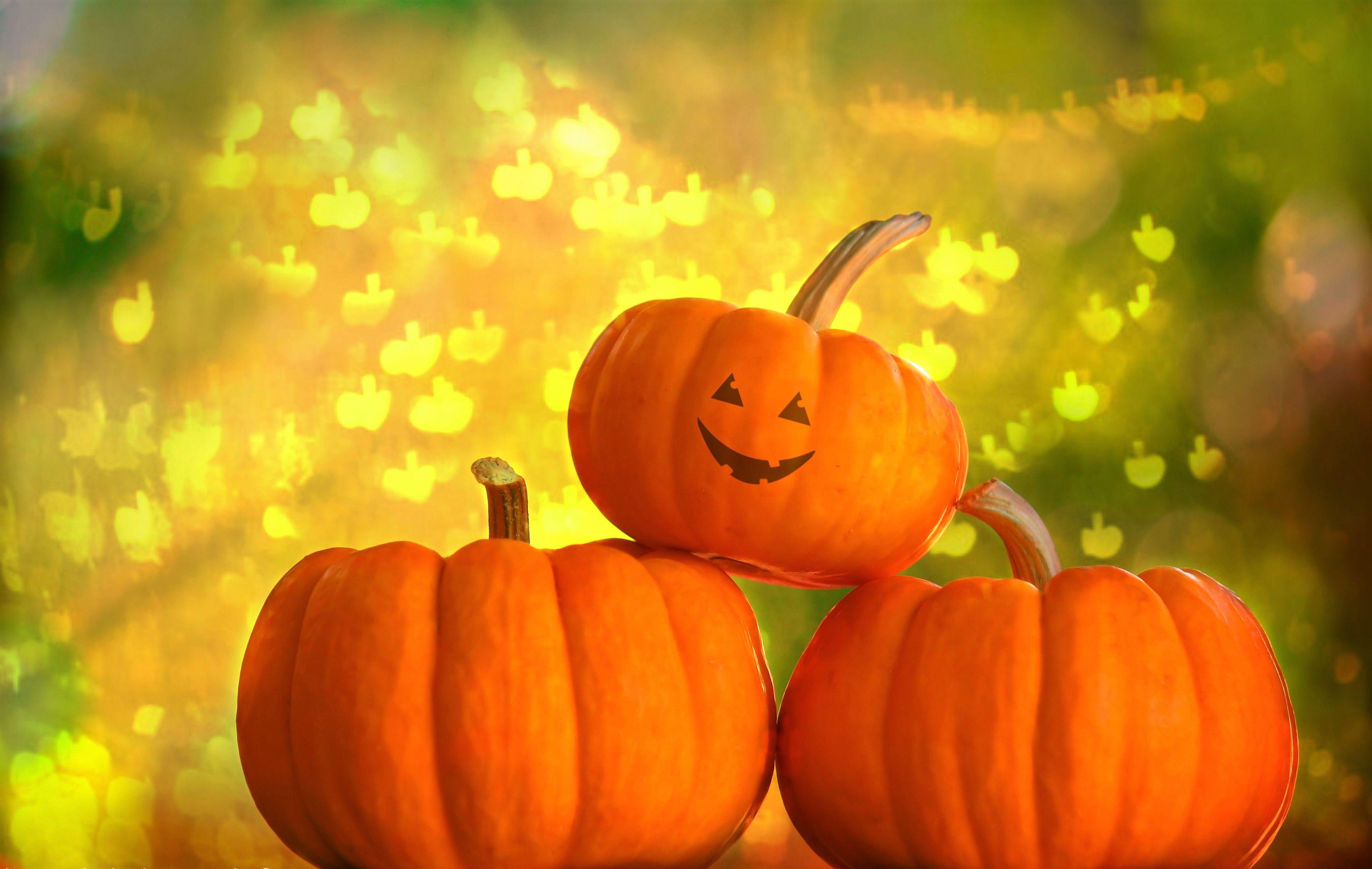 Halloween: Face, Smile, Holiday, Halloween, Pumpkin, Gourd