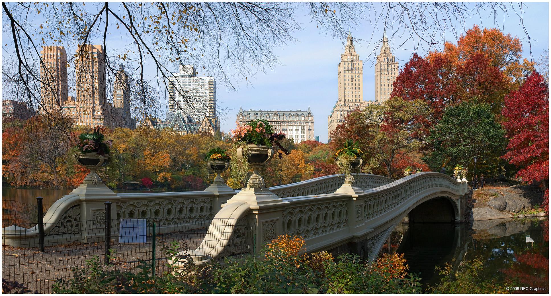 Bridge: Fall, New York