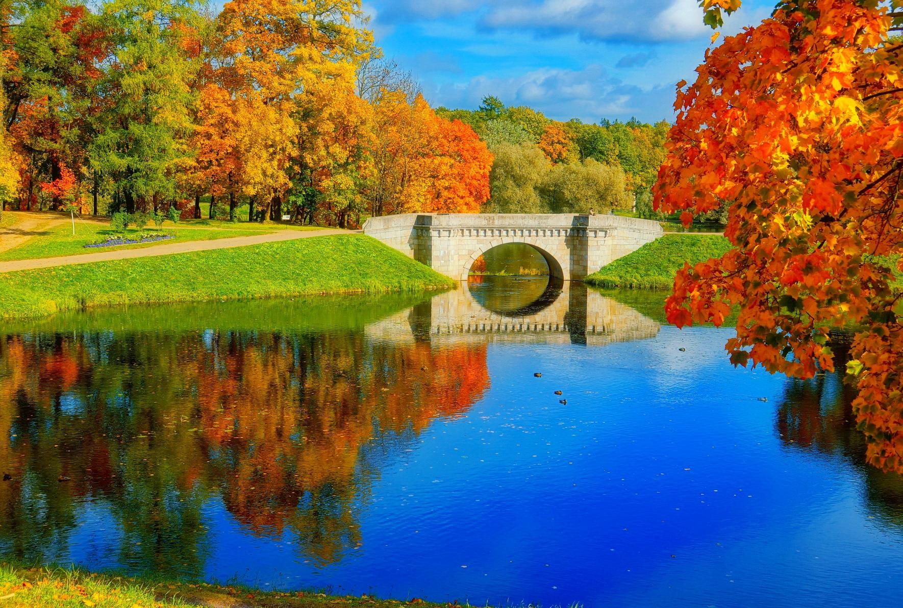Bridge: Bridge, Fall, Earth, Nature, Lake, Tree, Reflection, Foliage, Pond, Park